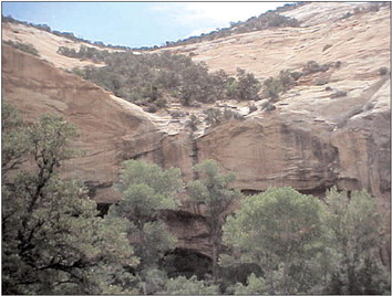 N J Man Died Of Thirst During Survival Adventure In Utah Desert Aspentimes Com