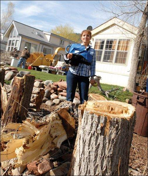 Tree cutting outrages residents of Glenwood mobile home ...