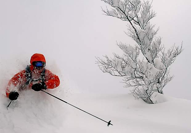 Can you say 'Japow'? A late January trip to Japan reveals a perfect powder jungle