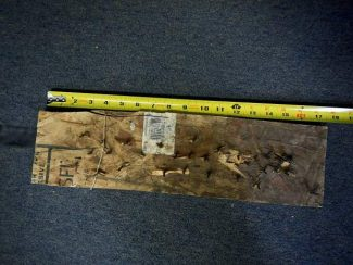 This is one of the boards riddled with nails that was placed on a trail along Prince Creek Road, southeast of Carbondale.