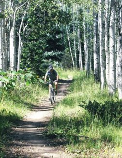 A mountain biker cruises through the Hunter Creek Valley near Aspen during the summer season. The U.S. Forest Service gave final approval Wednesday to a plan that authorizes new and improved trails in the Hunter Creek-Smuggler area.
