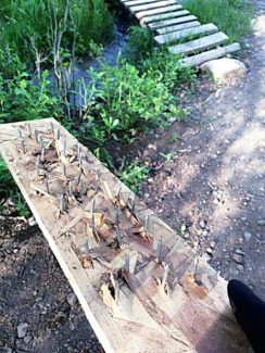 A cyclist riding the Prince Creek trail network southeast of Carbondale found this board with protruding nails buried on a singletrack trail in 2014. Another similar booby trap was found in the same area.