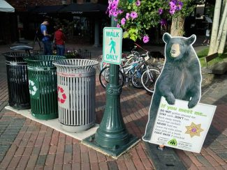 A display in the city of Aspen's Bear Aware campaign advises people on what to do if they encounter a bruin. Just a short distance away, is a city trashcan, left of the recycling containers, that needs to be retrofitted to make it bear-proof.