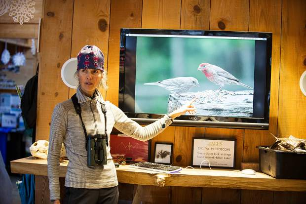 Rebecca Weiss, birding guide at the Aspen Center for Environmental Studies, prepares patrons for their birding experience on Tuesday with a mini lecture on finches before going on their birding tour outside.