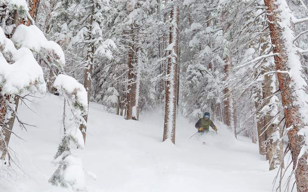 A skier makes their way through some powder-filled trees on Aspen Highlands on Saturday.
