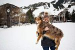 """Jill Sheeley's daughter Courtney plays with her dog Kip at Wagner Park on Wednesday. Courtney and Kip are the main character's in Sheeley's novel, """"Adventures of Kip in Aspen and Snowmass."""""""