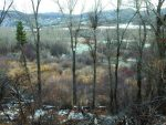 The Aspen-Sopris Ranger District wants to sell this 40-acre parcel that includes wetlands, a rare orchid, Roaring Fork River frontage and a popular hiking route. It pledgeds the El Jebel-area land will be conserved.