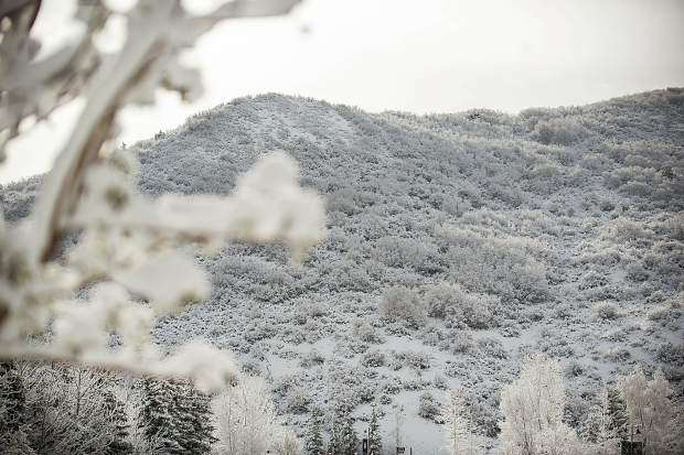 New snowfall in Snowmass from the Monday storm.