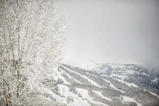 Fresh snow on Snowmass Mountain this morning.