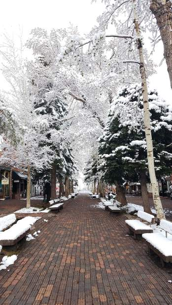 Quiet, snowy morning Tuesday along the Hyman Avenue mall in Aspen.
