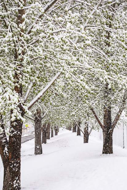 A snowy boulevard on Thursday in Edwards. Snow made for problematic roadways around the state.