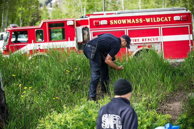 Volunteers for Snowmass clean up day on Friday.