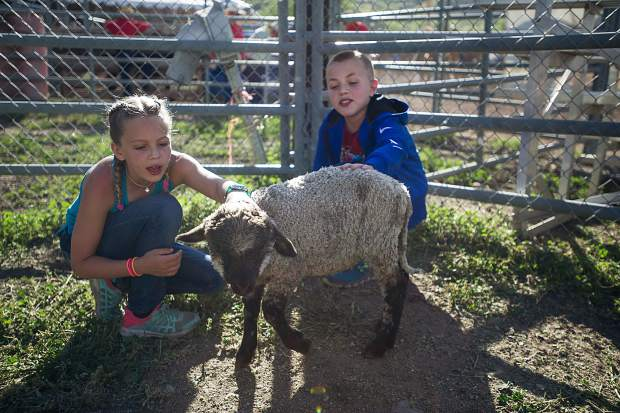 Children pet sheep and goats.