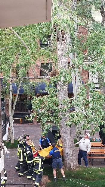 Officials wait to catch a mother bear on Thursday after she was tranquilized and brought down from a tree in downtown Aspen.