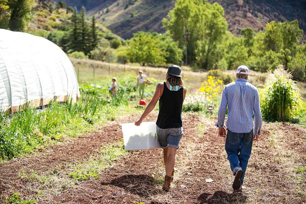 It's fall harvest time at Erin's Acres Farm on the Lazy Glen Open Space.