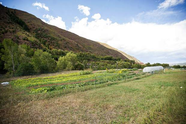 Erins Acres Farm is visible on a bench north of Highway 82 and the Roaring Fork River between Lazy Glen subdivision and Old Snowmass.
