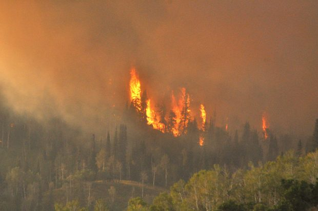 Routt County Fire Grows to 1400 Acres