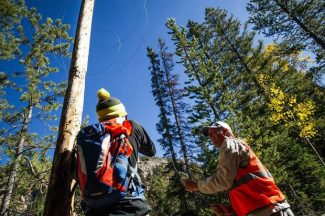 'Eyesore' wires being pulled down from old poles along Independence Pass