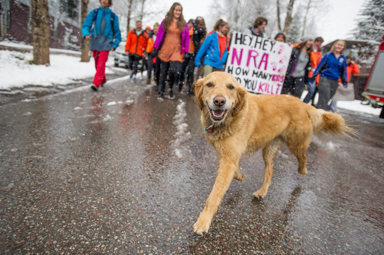 Golden retriever Lily joined students of Aspen High School marching towards Paepcke Park on Friday for a student-organized walkout addressing all of the school shootings.