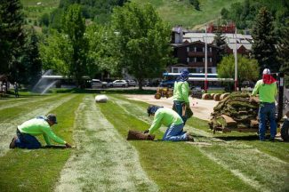 Should city of Aspen help pay to fix Wagner Park after Food & Wine? $90k pricetag debated
