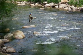 State wildlife officials, partners urge voluntary stop in fishing Roaring Fork River when water temps rise