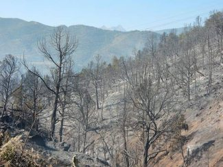 Plans underway to restore landscape, ease mudslides from Lake Christine Fire