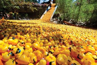 Glenwood man wins $10,000 in Ducky Derby