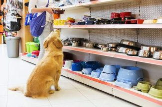 Aspen pet shop's attorneys say they have identified online commenter