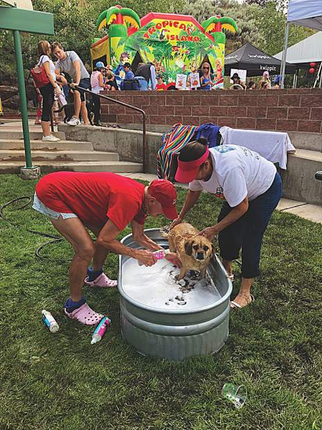A reluctant pup gets bathed at the Aspen Animal Shelter's Dog Day Afternoon on Aug. 5.