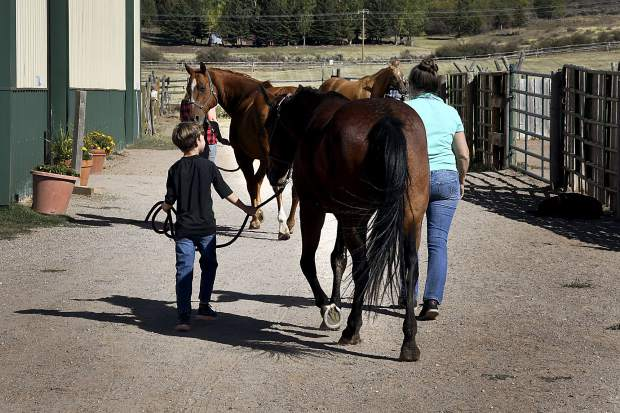 Horses are led into the main barn for the next therapy session at WindWalkers.