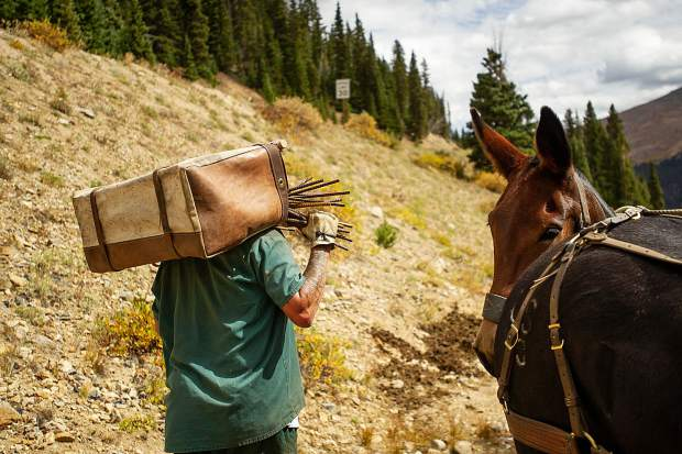 A Buena Vista Correctional Facilty inmate carries a pannier of rebar that fell off of a mule from the packline from Mountain Boy Basin on Independence Pass on Sept. 19 from a snowfence installed in the early 1960s for an Independence Pass Foundation project. Throughout three-and-a-half days this summer, the pack string, inmates and IPF crew collectively removed more than 6.5 tons of rebar and metal cable out of Mountain Boy Basin.