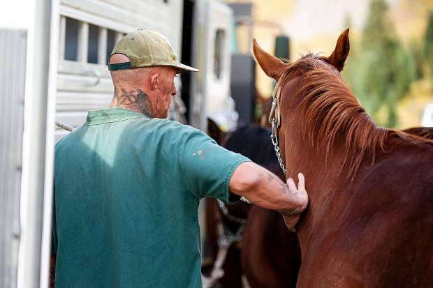 A Buena Vista Correctional Facility inmate gently pets a horse before prepping the pack line to head up to Mountain Boy Basin on Independence Pass on Sept. 19 to remove rebar from a snowfence installed in the early 1960s for an Independence Pass Foundation project.