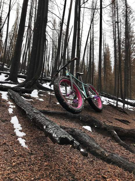 The root section on the Ditch Trail on Basalt Mountain was affected by the Lake Christine Fire but the pleasant route was mostly unscathed.