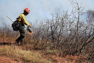 Fall prescribed burns include one above El Jebel, another west of Redstone
