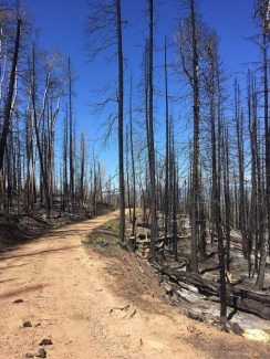 Fire closure lifted on Basalt Mountain but Forest Service warns of risks