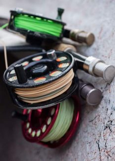On the Fly: Tools of the trade