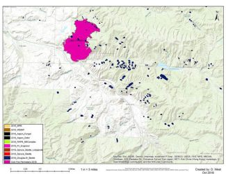 State entomologist: Lake Christine Fire burn area ripe for Douglas fir beetle infestation