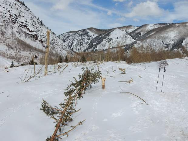 Conundrum trailhead area closed southwest of Aspen due to avalanche damage
