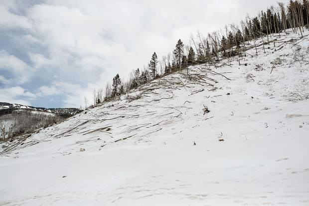 The avalanche roared down the west side of the valley with such velocity that it traveled a couple hundred feet up the east side and knocked down numerous trees.