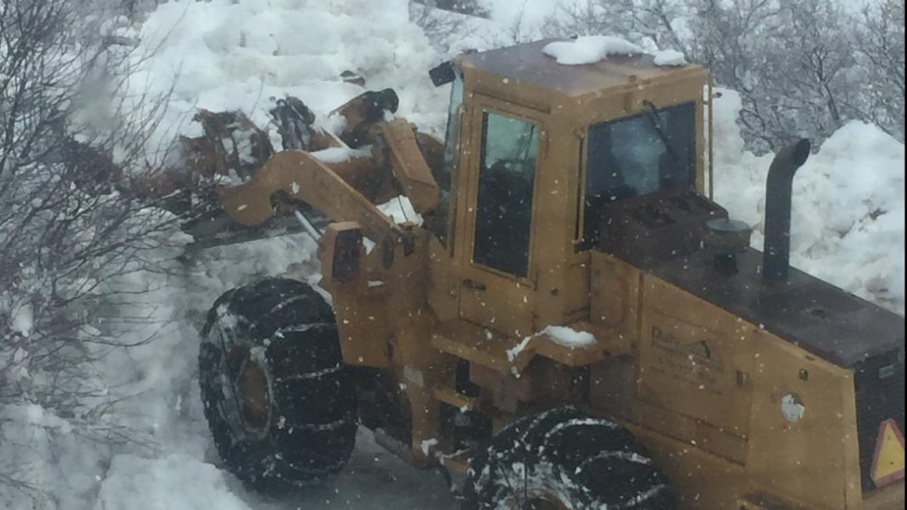 A Caterpillar front loader cleared the writer's drive in Old Snowmass, Colorado and in the process unleashed a memory when it dug up some spring dirt.