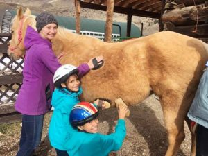 Giddy up: Blue River Horse Center invites community to 'Meet the Horses' at May 11 open house