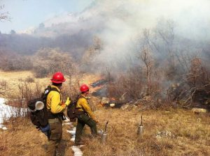 Prescribed burn planned in Avalanche Creek, 9 miles south of Carbondale