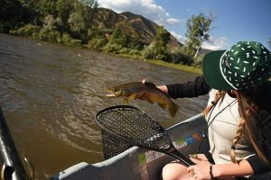 On the Fly: Be not afraid if the rivers look a little unclear