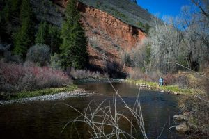 Roaring Fork Conservancy will host Fryingpan River Cleanup Saturday in Basalt