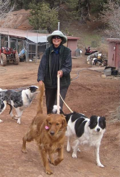 Ollie Bode walks dogs in her care at her boarding kennel in April 2013. Bode has provided reasonably-priced, reliable boarding for 26 years. She is closing June 1 and retiring.