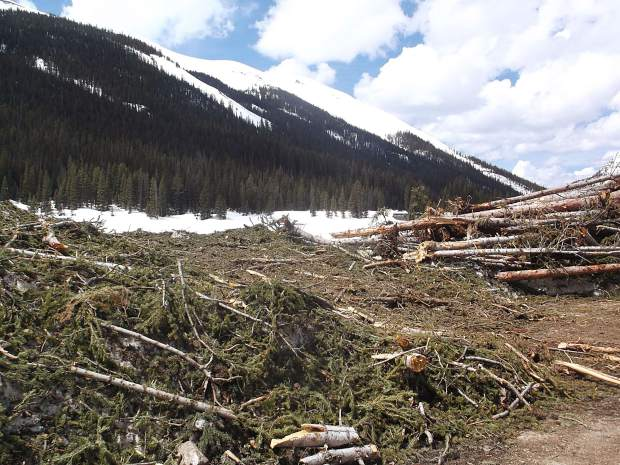 Tree trunks are stacked like matchsticks after the Schryvers plowed Lincoln Creek Road. They plowed through the debris of 14 avalanches.