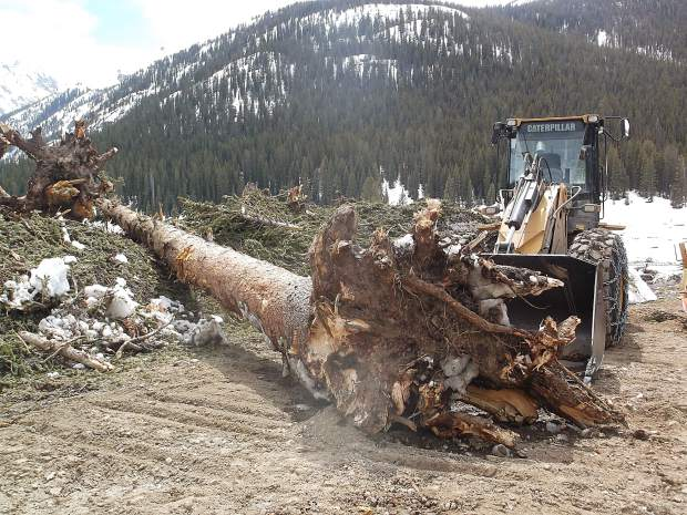 A front-end loader had to be used to remove this massive tree trunk from Lincoln Creek Road.