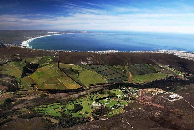 Hamilton Russell Vineyard on the Western Cape of South Africa.