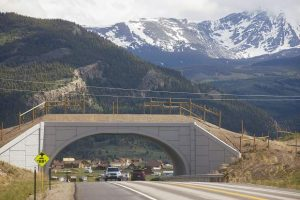 Summit County looks at possibility of constructing new wildlife crossings to improve driver safety
