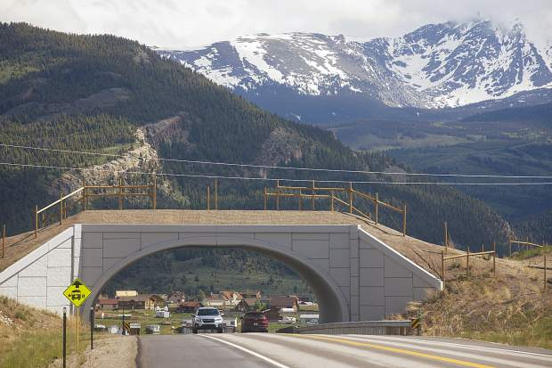 Summit County government is looking at the possibility of constructing three new wildlife crossings to improve driver safety